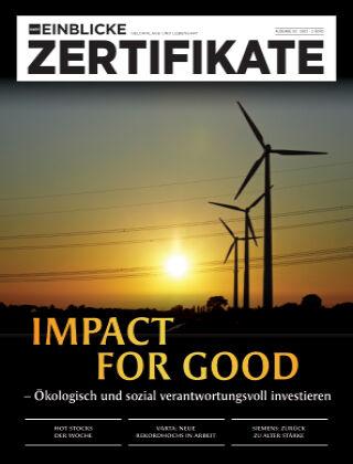 marktEINBLICKE Zertifikate 2021-02