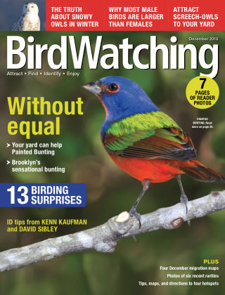 BirdWatching Nov-Dec 2016