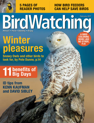 BirdWatching Jan-Feb 2017