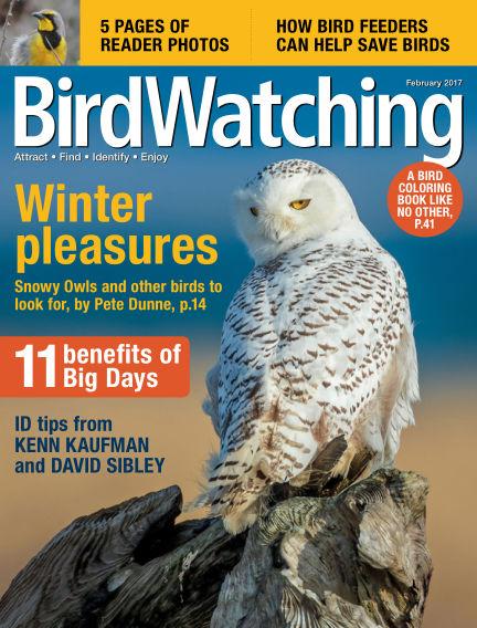 BirdWatching December 24, 2016 00:00