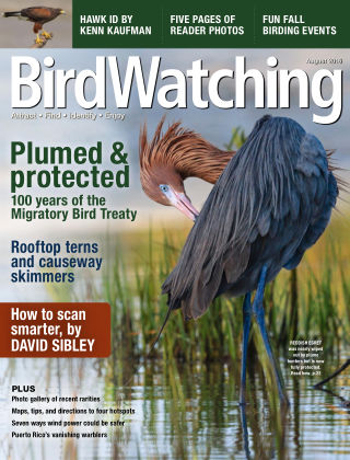 BirdWatching Jul-Aug 2016