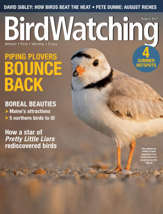 BirdWatching Jul-Aug 2017