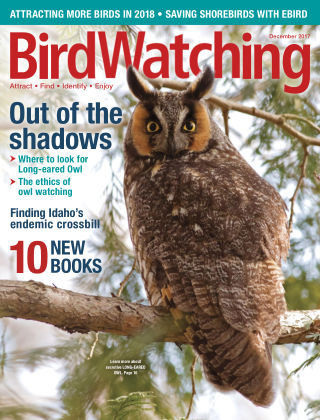BirdWatching Nov-Dec 2017