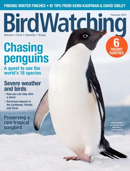 BirdWatching December 02, 2017 00:00
