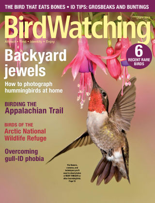 BirdWatching May-Jun 2018