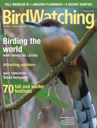 BirdWatching Sep-Oct 2018