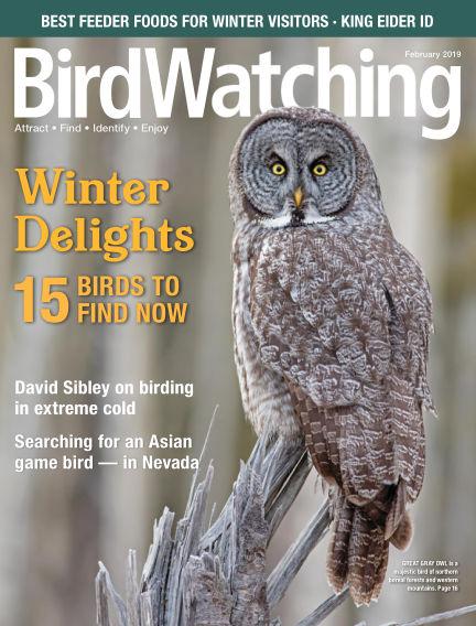 BirdWatching December 08, 2018 00:00
