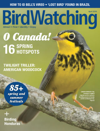 BirdWatching Mar-Apr 2019