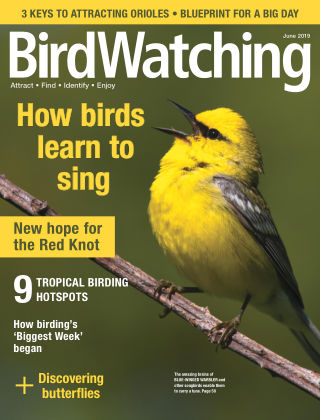 BirdWatching May-Jun 2019