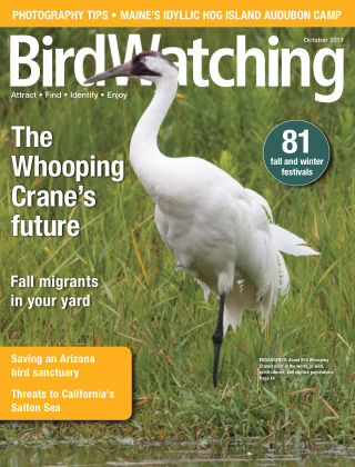BirdWatching Sep-Oct 2019