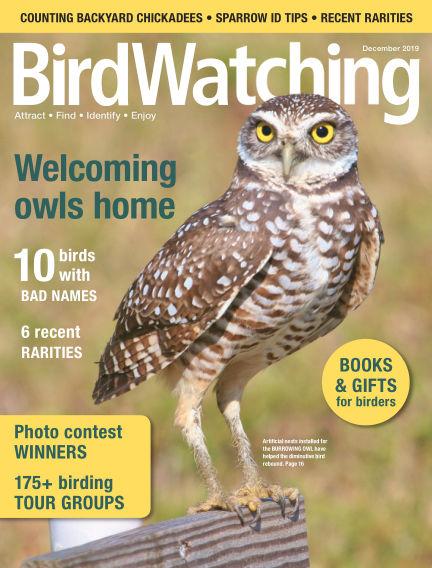 BirdWatching October 12, 2019 00:00