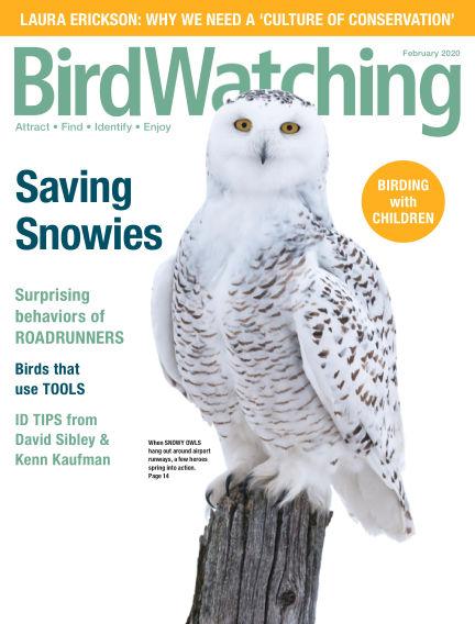 BirdWatching December 07, 2019 00:00