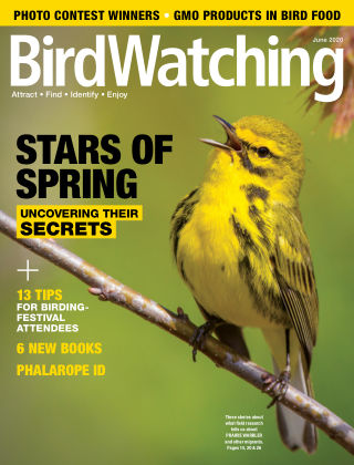 BirdWatching May-Jun 2020