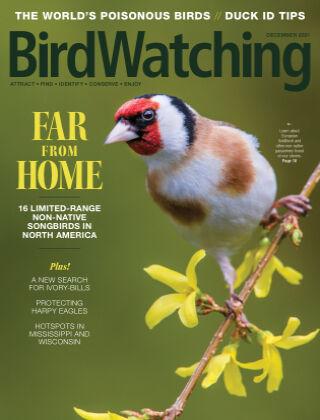 BirdWatching Nov/Dec 2021