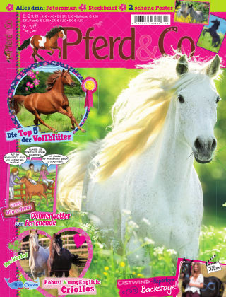 Pferd&Co 04/17
