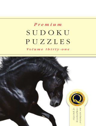 Premium Sudoku No.31