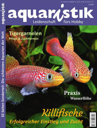 aquaristik 1/2020