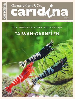 caridina 3/2018