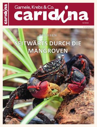 caridina 4/2018