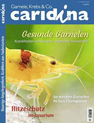 caridina 3/2020