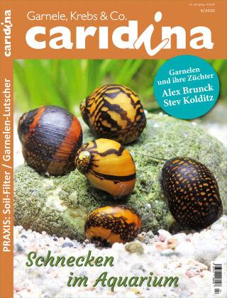 caridina 4/2020