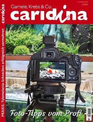 caridina 1/2021