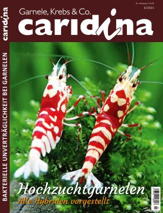 caridina 3/2021