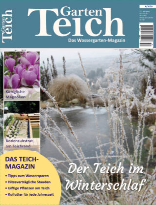 MIDORI - Das Garten-Teich-Magazin 4/2020