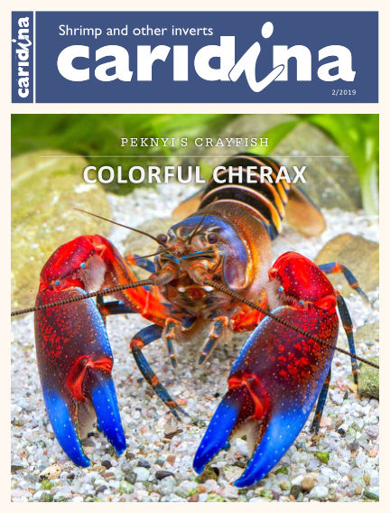 caridina International April 24, 2019 00:00