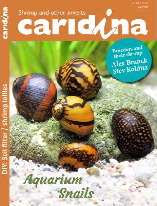 caridina International 4/2020