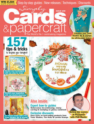 Simply Cards and Papercraft ISSUE208