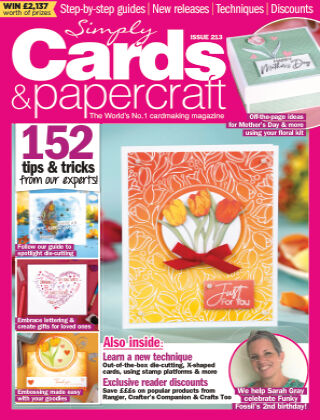 Simply Cards and Papercraft ISSUE213
