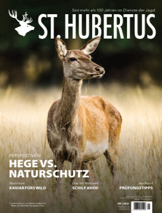 St. Hubertus 09/2021