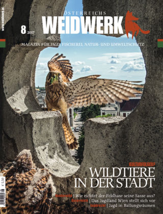 WEIDWERK 8/2017