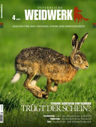 WEIDWERK 04/2020