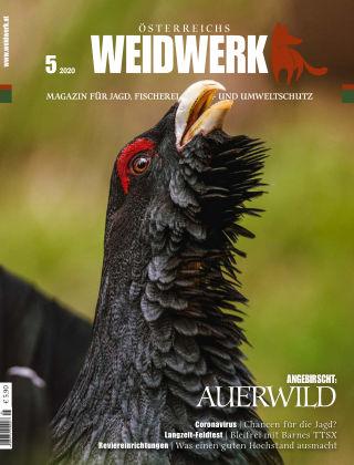WEIDWERK 05/2020