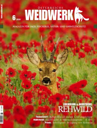 WEIDWERK 06/2020