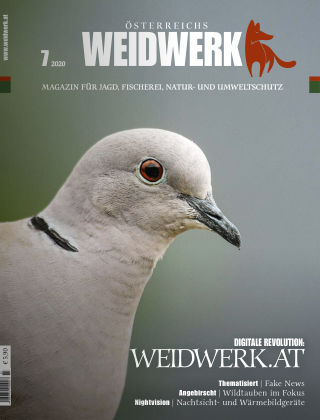 WEIDWERK 7/2020