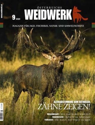 WEIDWERK 09/2020