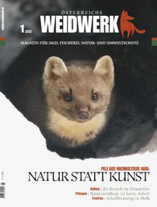 WEIDWERK 01/2021