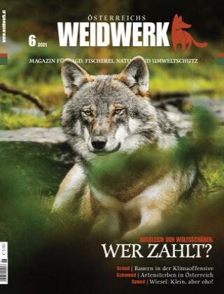 WEIDWERK 06/2021