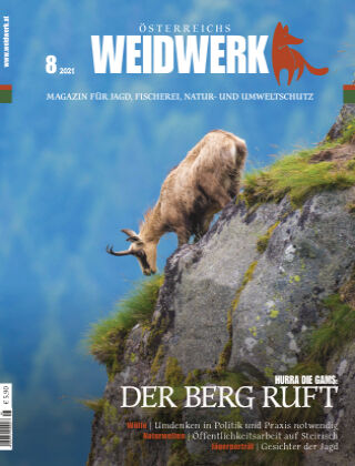 WEIDWERK 08/2021