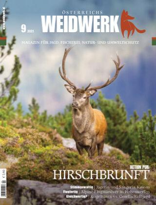 WEIDWERK 09/2021
