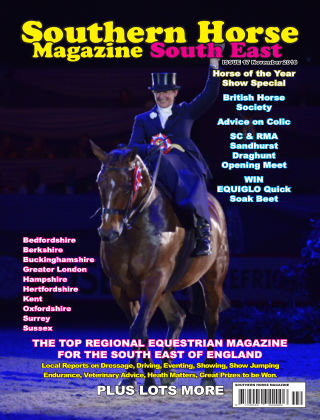 Southern Horse: South East November 2018