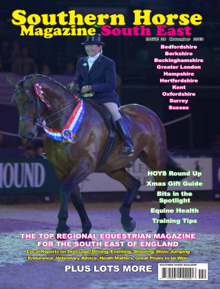 Southern Horse: South East November 2019