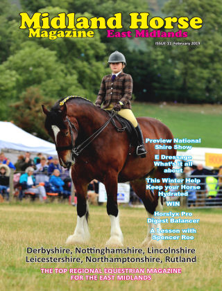 Midland Horse: East Midlands February 2019