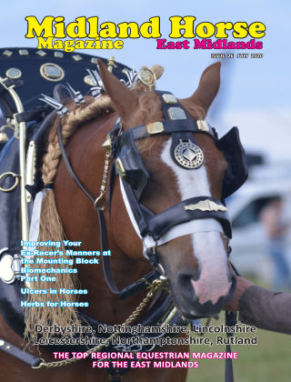 Midland Horse: East Midlands July 2020