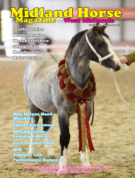 Midland Horse: West Midlands November 30, 2019 00:00