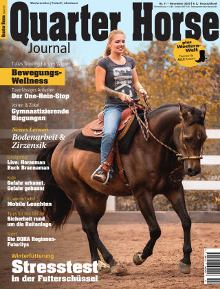 Quarter Horse Journal 11/2020