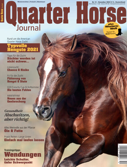 Quarter Horse Journal November 25, 2020 00:00